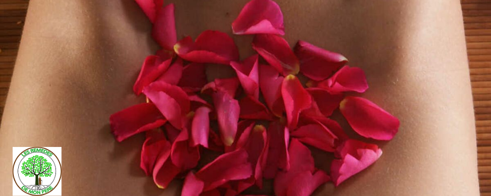 Le Basilic : Une plante pour adoucir le vagin